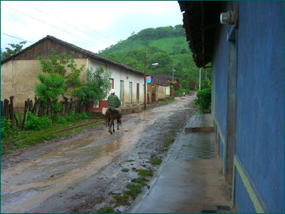 A horse and rider travel up the wet streets of Limay.