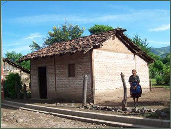 Woman with new house